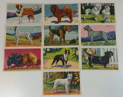 Vtg Advertising Kellog's Gro-Pup Collectible Dog Cards Set of 10 Jack Murray