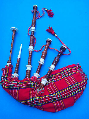 Great Scottish Highland Bagpipes Immattion Ivory Natural Brown Color/Bagpipes