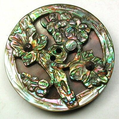 Fabulous Antique Button Compound Iridescent Carved Shell Flowers Design 1 & 1/16