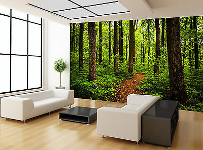 Trail Through Tall Trees Lush Forest Wall Mural Photo Wallpaper GIANT WALL DECOR