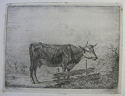 J. C. Gaal ´die Kuh Am Zaun; Cow Next To A Fence´ Nach P. Gaal, H.&l. 18, 1850