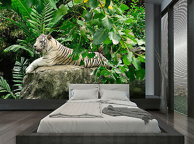 White Tiger Jungle Green Nature Wall Mural Photo Wallpaper GIANT WALL DECOR