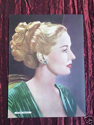 Valerie Hobson - Film Star - 1 Page Picture - Clipping / Cutting