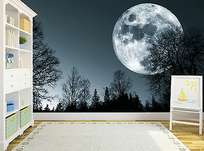 Forest Night Trees Dark Moon Sky Wall Mural Photo Wallpaper GIANT WALL DECOR