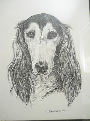 Saluki headstudy print by Jan Jellins '85 gold metal frame 14 x 11½""