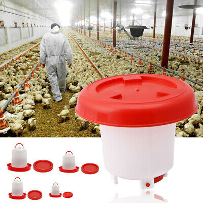 1.5L/2.5L/4L/6L Chicken Feeder Drinker Poultry Chick Hen Quail Bantam Food Water