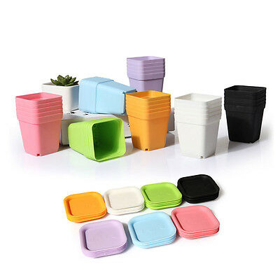 10pcs Mini Square Plastic Plant Flower Pot Home Office Decor Planter Colorful