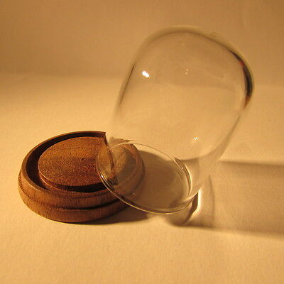 Doll house miniature glass display dome on wooden base ~ 1/12 scale