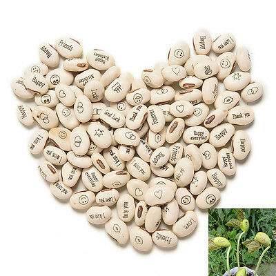 100PCS DIY Magic Bean Seed Plant Love Gift Growing Message Word QW