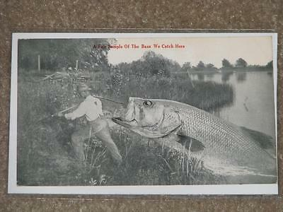 A Sample of the Bass We Catch Here (Grafton Center), used vintage card