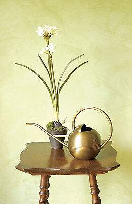 Brass Watering Can Round 1 Liter Indoor Antique Brass Watering Can Long Spout