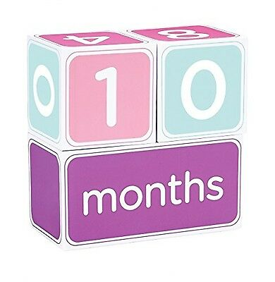 Pearhead Baby Age Photo Sharing Blocks Pink NEW GIFT, FREE SHIPPING