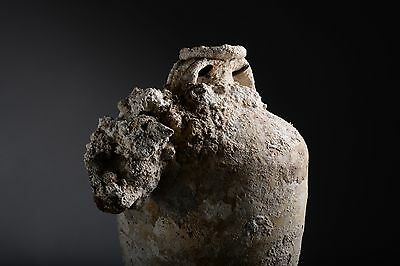 Large Ancient Roman Shipwreck Salvaged Amphora - 100 AD
