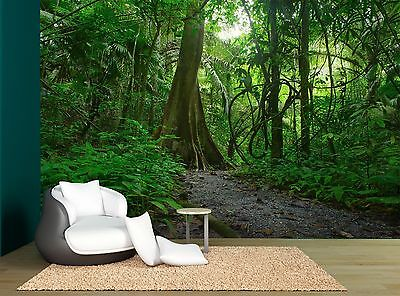 Jungle Forest Trees Tropical Green Wall Mural Photo Wallpaper GIANT WALL DECOR
