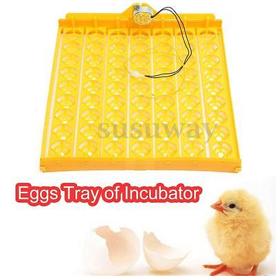 220V 63 Eggs Turner Tray Automatic Incubator Chicken Duck Bird Poultry Hatch