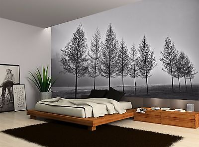Black And White Fog Trees Forest Wall Mural Photo Wallpaper GIANT WALL DECOR