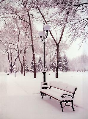 Christmas Decoration Light Up LED Canvas Wall Picture - Snow Park Bench