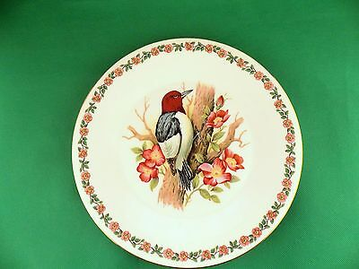 Royal Sutherland HM Bird Plate