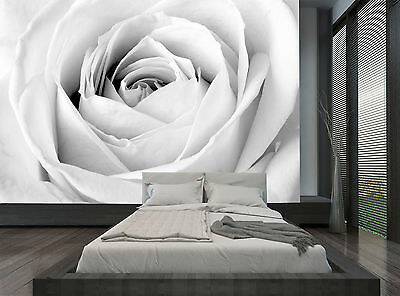 Floral Flower White Grey Rose Wall Mural Photo Wallpaper GIANT WALL DECOR