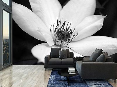 Black And White Flower Pretty Floral Wall Mural Photo Wallpaper GIANT WALL DECOR