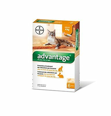 NEUF Bayer Advantage 40 Chat/Lapin 0-4 kg 6 pipettes antiparasitaires