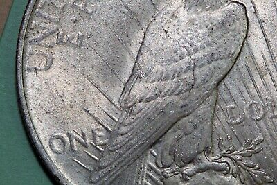"""One 1923-P Peace Silver Dollar VAM 1E """"Broken Wing"""" Early Die State (PDX875)"""