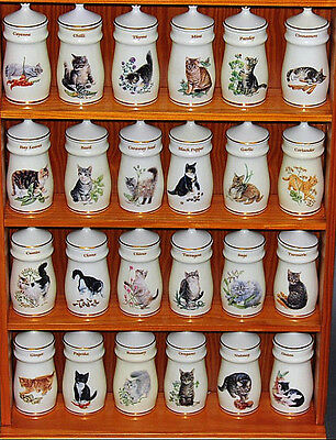 Lesley Anne Ivory Cat Spice Jars