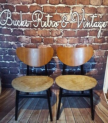 Vintage Retro Pair G Plan Tola E Gomme Butterfly Back Dining Chairs