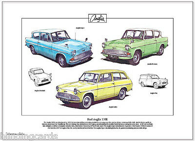 FORD ANGLIA 105E - Fine Art Print  A3 size - Estate, Super & De Luxe illustrated