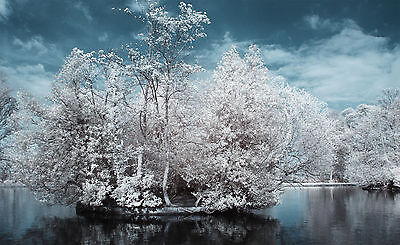 Canon infrared conversion for EOS 400D 450D 40D 50D and more - see list