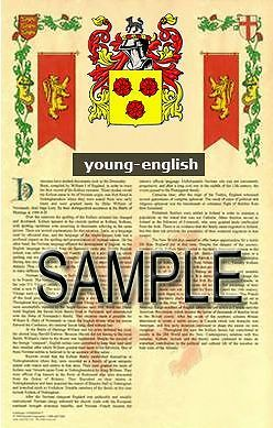 YOUNG Armorial Name History - Coat of Arms - Family Crest GIFT! 11x17