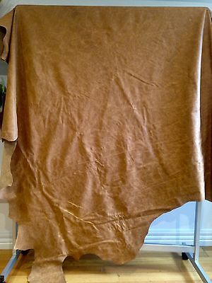 Leather Hide Tan (Large)