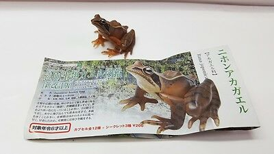 Yujin Frog Mini Figure  Gashapon Japanese Brown Frog #4