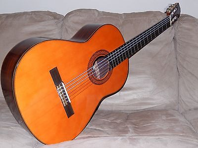 HAND MADE VINTAGE SHINANO GS250 CLASSICAL CONCERT GUITAR IN MINT(y) CONDITION