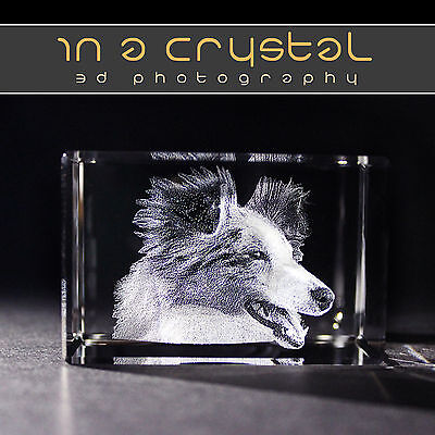 3D Crystal <><> Your Pet Photo Laser Engraved <><> Free Text Engraving !!
