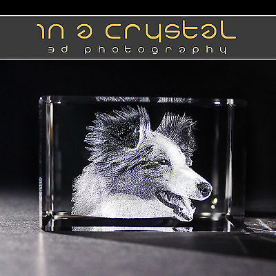 3D Crystal      Your Pet Photo Laser Engraved      Free Text Engraving !!