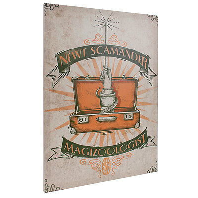 Fantastic Beasts and Where to Find Them Newt Scamander 13x18 Canvas Banner