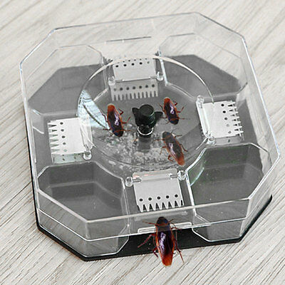 New Cockroach House Roacher Insects Bugs Capture Bait Trap Killer Catcher Box GA