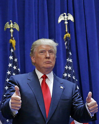 U.S. President DONALD TRUMP Glossy 8x10 Photo Repulican Party Print Poster