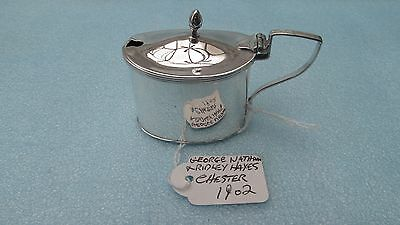 A Superb Solid Silver Edwardian Oval Mustard Pot Hallmarked Chester 1902