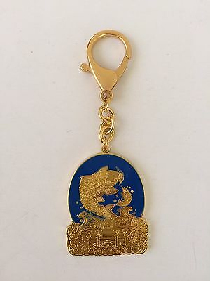 Feng Shui Education & Scholastic Keychain Amulet USA Seller