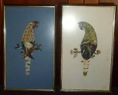 Two (2) Vintage Art Deco Genuine Butterfly Wing Art - Parrots - 2 Framed Pieces