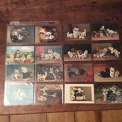 Wonderful Lifetime Antique Collection Of Cat Kitten Postcards Very Nice 56 cards