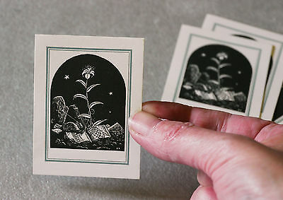 Vintage Rockwell Kent bookplate, graveyard, spider web, lily, MINT, 11 available