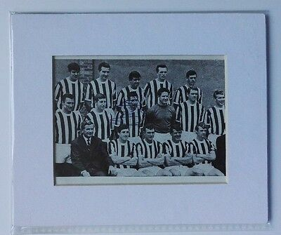 """RAY FAIRFAX - WEST BROMWICH ALBION  SIGNED PIC 1960's  6"""" x 5"""" MOUNTED  DISPLAY"""