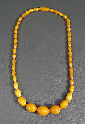 Old Eggyolk Amber Faturan Baltic Bernstein prayer worry beads 琥珀 choker necklace