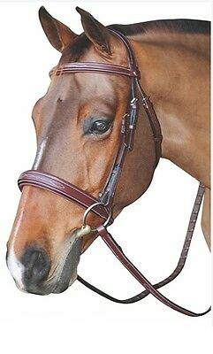 HDR Fancy Padded Bridle Wide Noseband Monocrown with Reins Australian Nut Cob