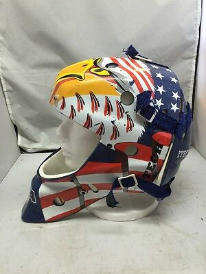 Team USA Hockey Goalie Helmet Itech Street/Roller