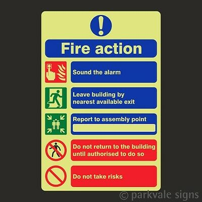 Photoluminescent General Fire Action Sign (7815)