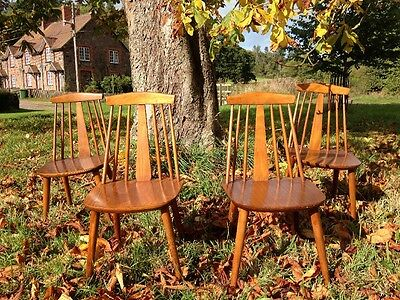 Four Radomsko Dining Chairs Ercol Style.